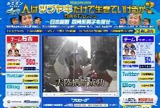 電波少年2010 人はツブヤキだけで生きていけるか?有吉vsTプロデューサー ~日本縦断 四角系男子を探せ~